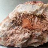 Aragonite<br />Hörndlinger Graben, Hochfilzen, Kitzbühel District, North Tyrol, Tyrol/Tirol, Austria<br />9,5 x 7 cm<br /> (Author: Volkmar Stingl)