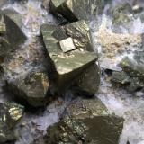Chalcopyrite, Quartz<br />Fenice Capanne Mine, Massa Marittima, Grosseto Province, Tuscany, Italy<br />14 x 9,5 cm<br /> (Author: Sante Celiberti)