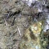 Chalcopyrite, Bismuthinite<br />Fenice Capanne Mine, Massa Marittima, Grosseto Province, Tuscany, Italy<br />11,5 x 5 cm<br /> (Author: Sante Celiberti)