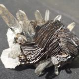 Hematite, Quartz<br />Jinlong Hill, Longchuan, Heyuan Prefecture, Guangdong Province, China<br />5 x 5 cm<br /> (Author: Volkmar Stingl)