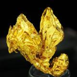 Gold<br />Dongbeizhai Mine, Songpan, Ngawa Autonomous Prefecture, Sichuan Province, China<br />Specimen size: 1.1 × 0.9 × 0.5 cm /  main crystal size: 1 × 0.3 cm<br /> (Author: Jordi Fabre)