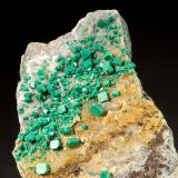 Metatorbernite<br />Calo, Vimianzo, Comarca Terra de Soneira, A Coruña / La Coruña, Galicia, Spain<br />2.8 x 3.0 x 5.0 cm.<br /> (Author: Michael Shaw)