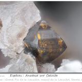 Anatase on Calcite<br />Grand Pic de la Lauzière, La Lauzière Massif, Saint-Jean-de-Maurienne, Savoie, Auvergne-Rhône-Alpes, France<br />fov 4.2 mm<br /> (Author: ploum)