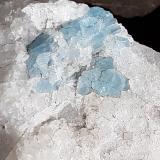 Beryl (variety aquamarine)<br />Woisgenscharte, Mallnitz, Spittal an der Drau, Hohe Tauern, Carinthia/Kärnten, Austria<br />Crystal size 6 mm<br /> (Author: Volkmar Stingl)