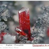 Proustite<br />Imiter Mine, Jebel Saghro, Imiter District, Tinghir Province, Drâa-Tafilalet Region, Morocco<br />fov 3.2 mm<br /> (Author: ploum)