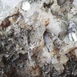 Beryl, Muscovite, Pyrite<br />White Mountains, Inyo County, California, USA<br />8,5 x 6,5 cm, FoV ca. 2 cm wide<br /> (Author: Volkmar Stingl)