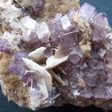 Fluorite, Baryte<br />Berbes mining area, Berbes, Ribadesella, Comarca Oriente, Asturias, Principality of Asturias, Spain<br />6 x 3 cm<br /> (Author: Volkmar Stingl)