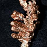 Copper<br />Keweenaw County, Michigan, USA<br />3x1.5x1.2 cm''s<br /> (Author: Joseph DOliveira)