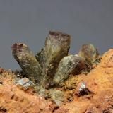 Adamita (variedad manganesífera)<br />Mina Ojuela, Mapimí, Municipio Mapimí, Durango, México<br />cristal 20x20 mm<br /> (Autor: Ramon A  Lopez Garcia)