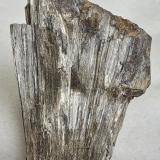 Anthophyllite, Almandine<br />Monteneve Mine (Schneeberg Mine), Val Passiria/Passeiertal, Moso in Passiria (Moos in Passeier), Trento Province, Trentino-Alto Adige (Trentino-Südtirol), Italy<br />5,5 x 3,5 cm<br /> (Author: Volkmar Stingl)
