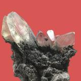 Anglesite<br />Touissit, Touissit District, Jerada Province, Oriental Region, Morocco<br />biggest crystal 5 cm long<br /> (Author: Jean Suffert)