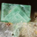 Torbernite<br />Chaméane Uranium Deposit, Le Vernet-Chaméane, Issoire District, Puy-de-Dôme Department, Auvergne-Rhône-Alpes, France<br />FOV 1mm<br /> (Author: david916)