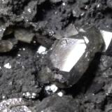 Anglesite<br />Monteponi Mine, Iglesias, Sud Sardegna Province, Sardinia/Sardegna, Italy<br />62 x 51 mm<br /> (Author: Sante Celiberti)