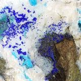 Azurite, Malachite, Chrysokolla, Zn-Olivenite, Dolomite<br />Ringenwechsel Mining District, Troi, District Schwaz, Inn Valley, North Tyrol, Tyrol/Tirol, Austria<br />7 x 5 cm<br /> (Author: Volkmar Stingl)