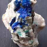 Azurite on Dolomite, Malachite<br />Ringenwechsel Mining District, Troi, District Schwaz, Inn Valley, North Tyrol, Tyrol/Tirol, Austria<br />3 x 2 cm<br /> (Author: Volkmar Stingl)