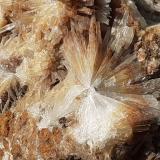 Aragonite<br />Magnesite deposit, Bürglkopf, Hochfilzen, Kitzbühel District, North Tyrol, Tyrol/Tirol, Austria<br />10 x 8 cm<br /> (Author: Volkmar Stingl)