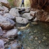 El agua aparece en varias surgencias difusas en la cabecera del valle incluso meses después de las últimas lluvias de la primavera anterior. Un privilegio teniendo en cuenta que nos encontramos en el desierto de Tabernas, uno de los lugares más secos de España con un promedio de precipitación anual de unos 200 l/m2 (Autor: Josele)