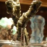 """The """"Tree"""" at home in our cabinet. (Author: Gail)"""
