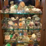 Some of our many Fluorites on display. (Author: Gail)