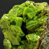 Uranocircite of intense neon green colour on granite matrix. Total size is 11 x 5 x 7 cm, FOV is approx. 5 cm. From the early 1990s when a big find was made with excellent samples. (Author: Montanpark)