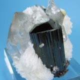 Topaz, schorl, quartz, albite, mica Chamachhu, Haramosh Mts., Skardu, Gilgit-Baltistan, Pakistan  56 mm x 47 mm (Author: Carles Millan)