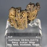 Cuprian Descloizite, nice! (Author: Gail)