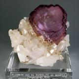 They goofed on the label, no scheelite included in this piece. But I love the shape of the fluorite. (Author: Gail)