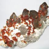 Spessartine, quartz Lechang Mine, Lechang, Shaoguan, Guangdong, China 125 mm x 68 mm (Author: Carles Millan)