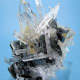 Hübnerite, quartz Mundo Nuevo mine, Huamachuco, Sánchez Carrión, La Libertad, Peru 84 mm x 57 mm (Author: Carles Millan)