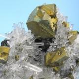 Chalcopyrite, quartz Alimon Mine, Huaron, San José de Huayllay, Cerro de Pasco, Daniel Alcides Carrión, Pasco, Peru 70 mm x 63 x mm 33 mm  Close-up view (Author: Carles Millan)