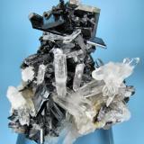 Hübnerite, quartz Mundo Nuevo mine, Huamachuco, Sánchez Carrión, La Libertad, Peru 81 mm x 56 mm (Author: Carles Millan)