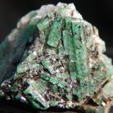Emeralds in Biotite Schist.  Cobra Pit, Gravelotte Emerald Mine, Limpopo Province, S. Africa 2.7 x 2.3 x 2.5cm Crystals to 1.6cm (Author: Debbie Woolf)