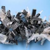 Hübnerite, quartz Mundo Nuevo Mine (Labor Toro), Huamachuco, La Libertad, Peru 100 mm x 60 mm (Author: Carles Millan)