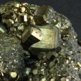 07 Pyrite Nanisivik 04.JPG (Author: Matt_Zukowski)