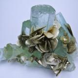 Beryl, muscovite Chumar Bakhoor, Hunza Valley, Nagar, Gilgit-Baltistan, Pakistan 100 mm x 70 mm. Main beryl crystal size: 22 mm wide (Author: Carles Millan)