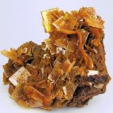 Wulfenite, mimetite San Francisco Mine, Cerro Prieto, Cucurpe, Sonora, Mexico 65 mm x 50 mm. Main wulfenite crystal: 14 mm on edge (Author: Carles Millan)
