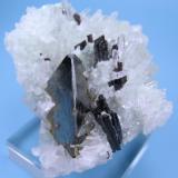 Tetrahedrite, hübnerite, quartz Mundo Nuevo Mine, Huamachuco, Sánchez Carrión, La Libertad, Peru 61 mm x 57 mm. Tetrahedrite crystal edge: 25 mm long  Front view (Author: Carles Millan)