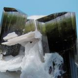 Elbaite, albite, quartz Stak Nala, Haramosh Mountains, Skardu, Gilgit-Baltistan, Pakistan 65 mm x 57 mm. Major elbaite crystal size: 16 mm wide  Close up view (Author: Carles Millan)