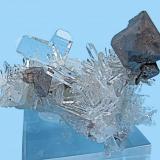 Scheelite, quartz Tamboras, Mundo Nuevo, Huamachuco, Sánchez Carrión, La Libertad, Peru 60 mm x 41 mm; main scheelite crystal: 22 mm; twin quartz: 17 mm  Front view (Author: Carles Millan)