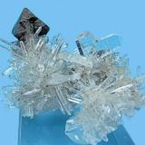 Scheelite, quartz Tamboras, Mundo Nuevo, Huamachuco, Sánchez Carrión, La Libertad, Peru 60 mm x 41 mm; main scheelite crystal: 22 mm; twin quartz: 17 mm  Back view (Author: Carles Millan)