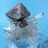 Scheelite, quartz Tamboras, Mundo Nuevo, Huamachuco, Sánchez Carrión, La Libertad, Peru 60 mm x 41 mm; main scheelite crystal: 22 mm; twin quartz: 17 mm  Side view (Author: Carles Millan)