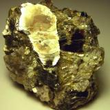 Pegmatite from Woodlawn Quarry, Wilmington, DE. Approximately 7cm tall. (Author: Turbo)