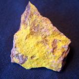 """Tyuyamunite is one of the radioactive minerals in my collection that the Border Patrols sensors detected when I came down from Alaska a couple of years ago. Very sensitive equipment. I like it for its bright yellow color. The minute tabular crystals and only be appreciated with 20x or more. It is from Blue Peak Mine, Poison Canyon Area, Grants District, Cibola County, New Mexico and measures 7/8"""" x 3/4"""" (2.22cm x 1.90cm) (Author: Jim Prentiss)"""