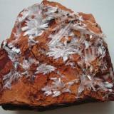 """White gypsum needles on """"fried"""" clay from the Basalt quarry Bauersberg near Bischofsheim, Rhön mountains, Bavaria. (Author: Andreas Gerstenberg)"""
