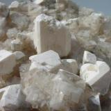 White picromerite crystals (up to 2,5 cm) on halite from the 800 m level, Bergmannssegen-Hugo potash mine, Lehrte near Hannover, Lower Saxony. (Author: Andreas Gerstenberg)