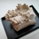 5 cm pectolite sample from the Kreimbach quarry, Niedernkirchen, Rhineland-Palatinate. (Author: Andreas Gerstenberg)