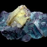 """This is another specimen of  La Collada area, come from the """"Josefa-Veneros"""" mine. It was found in 1970. Longuer 17 cm. Jeff Scovil Photo. (Author: jrg)"""