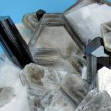 Schorl, muscovite, feldspar Dassu Valley, Shigar Valley, Skardu, Gilgit-Baltistan, Pakistan 116 mm x 83 mm. Both schorl major crystals: 13 mm wide  Close-up (Author: Carles Millan)