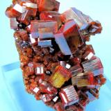 Vanadinite ACF Mine, Mibladen, Midelt, Khénifra, Meknès-Tafilalet, Morocco 62 mm x 48 mm. Major crystal: 11.5 mm wide edge to edge (Author: Carles Millan)
