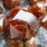 Granate glosularia. La Calera. Cordoba. Argentina. Tamaño cristal mayor 13 mm. (Autor: Jose Luis Otero)